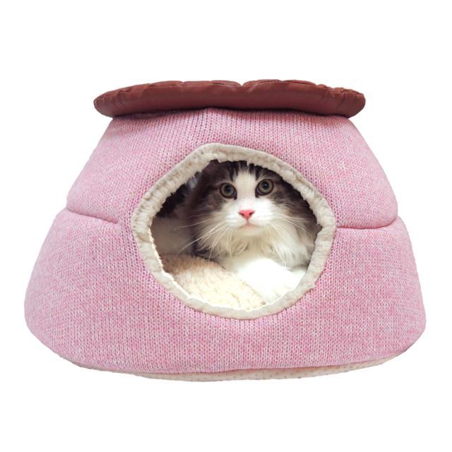 猫 キャットハウス ニャンとも見えちゃうおこた2020 にゃん丸 ペッツルート