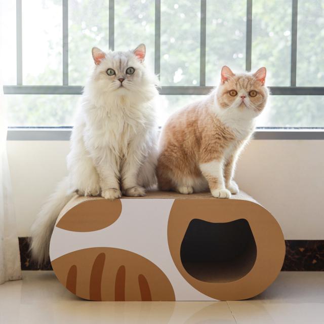 猫用 爪とぎダンボール猫ハウス トンネル型 HEBENA 使用風景