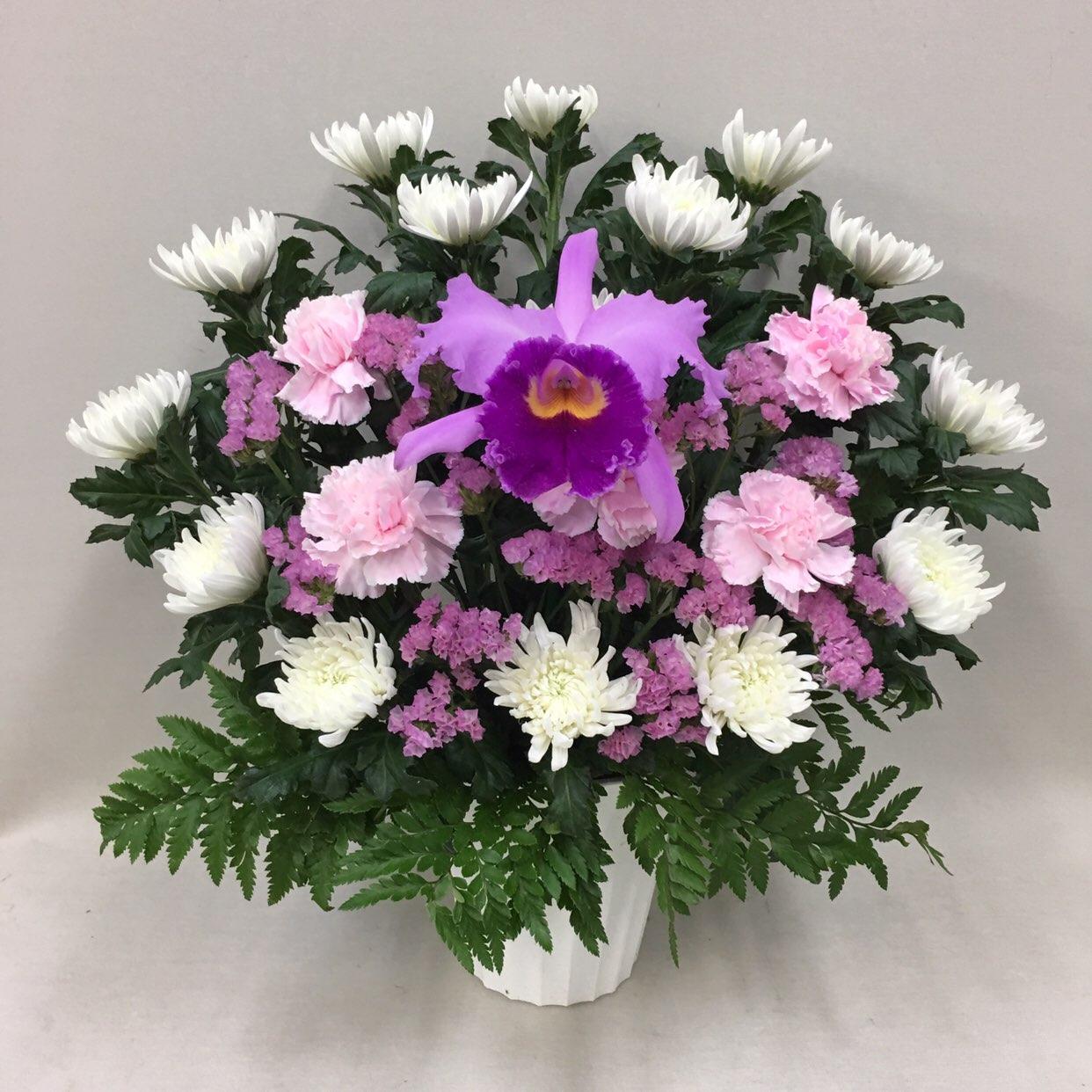 3323 【供花】カトレアと菊のアレンジメントP(H50) Cスタイル