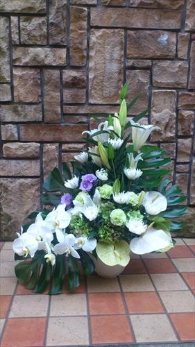 白胡蝶蘭・菊のメモリアルアレンジメント
