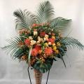 3449 オレンジ シングル コーンスタンド花