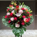 スタンド花1段 バラ グロリオサ 開店祝い 楽屋花 公演祝 赤 ピンク