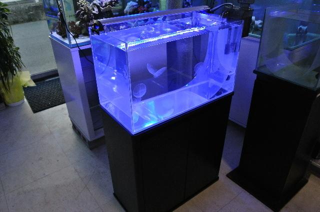 クラゲ飼育水槽セット(60cm水槽)