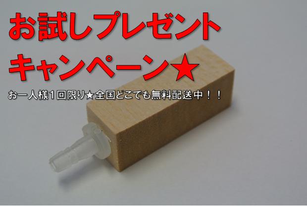 SNS投稿でウッドストーンプレゼントキャンペーン☆送料無料
