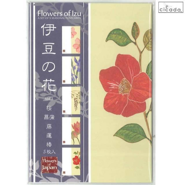 cicada はがき 伊豆の花シリーズ ポストカード5枚組