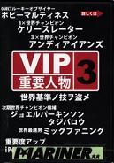 VIP3 重要人物 /サーフィンDVD