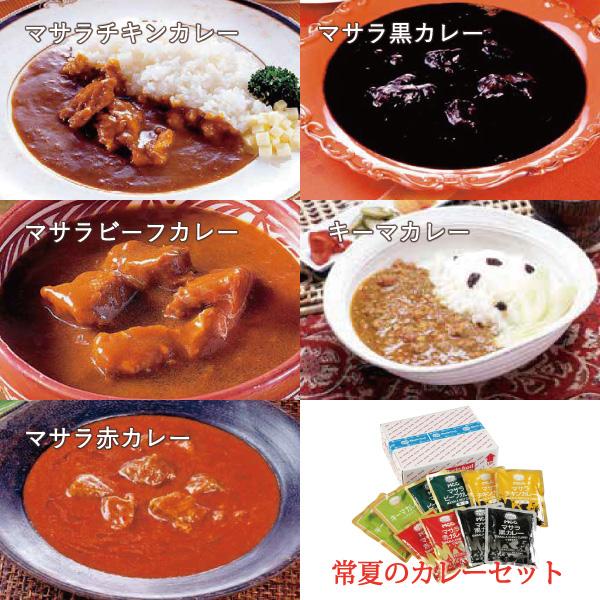 スパイシーカレーセット10食【mc-10】