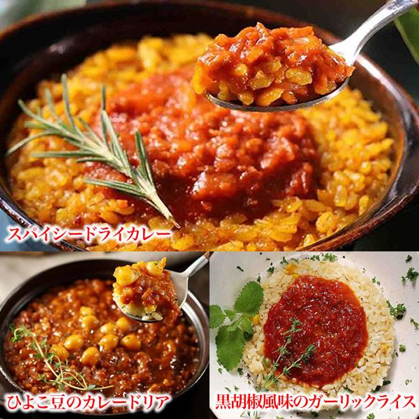 【ベジドリアセット 9食】