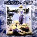 GRATEFUL DEAD TIE DYE T