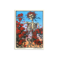 【 Skeleton & Roses Sticker 】スケルトン アンド ローズ