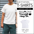 HARVEST HEMP TEE SLIM FIT T-SHIRTS/NATURAL