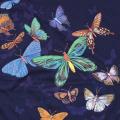 【送料無料】LOOK&TOUCH(ルックアンドタッチ)エキゾチックバタフライTシャツ:LT1844 /EXOTIC BUTTERFLIES T-SHIRTS[半袖]