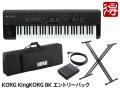 【即納可能】KORG KingKORG [KingKORG-BK] エントリーパック(新品)【送料無料】