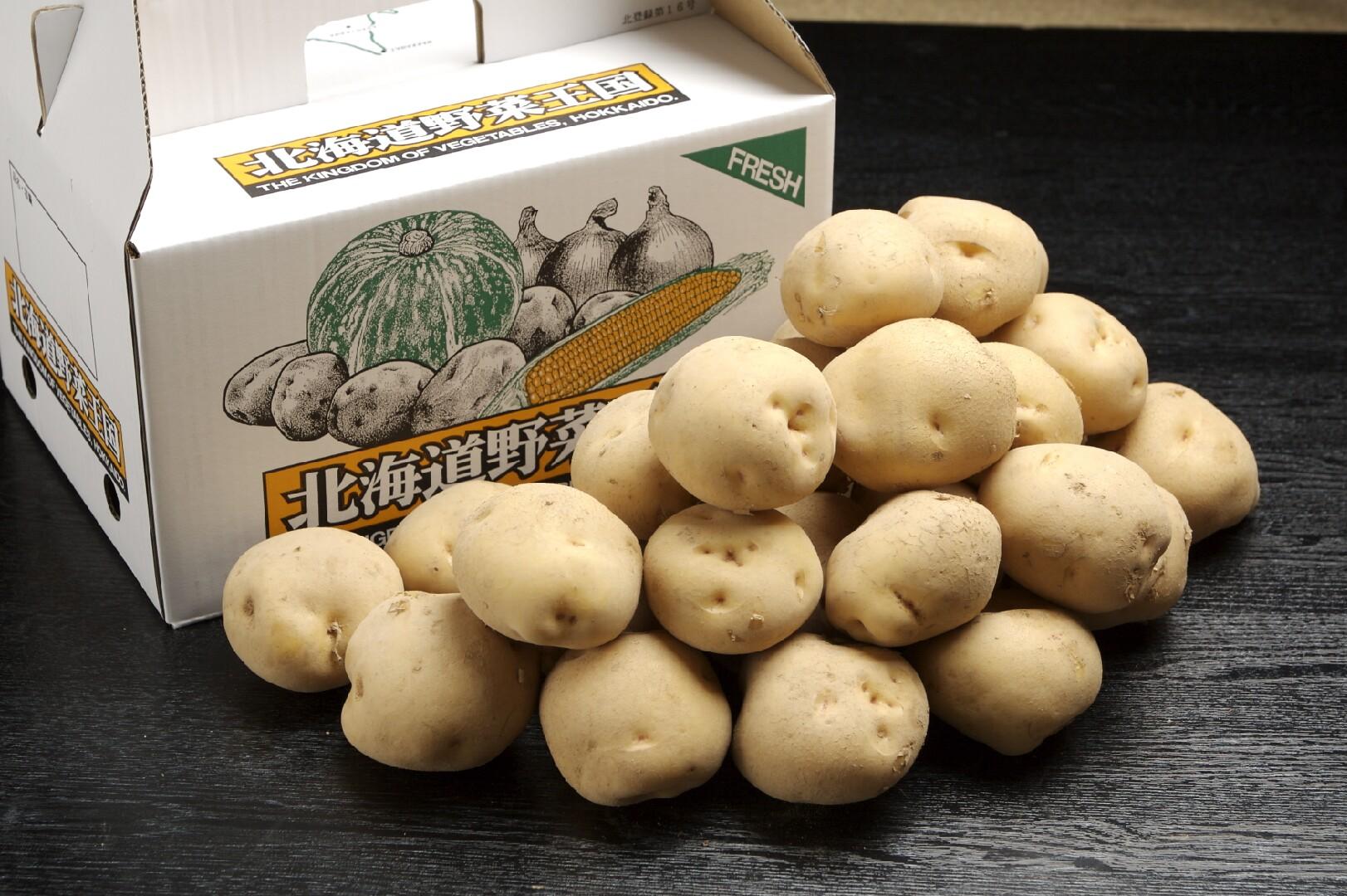 ニセコ産 男爵いも (Lサイズ厳選) 5kg 10kg 【同梱不可】