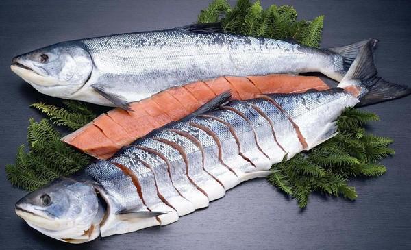 熟成秋鮭焼用中辛鮭一本物 AT