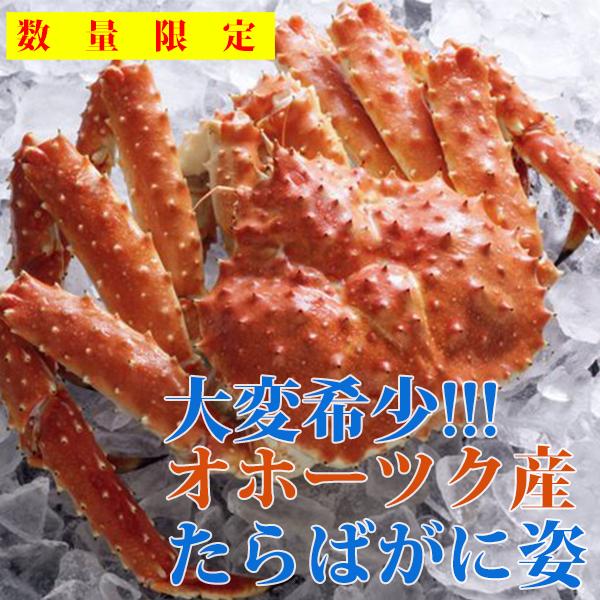 【希少】オホーツク枝幸産 本たらばがに(ボイル姿) 3.1kg~3.6kg