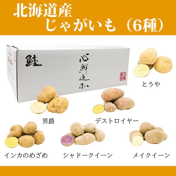 【10月上旬~発送】北海道産 じゃがいも(6種)バラエティセット 各種600g×6 【同梱不可】