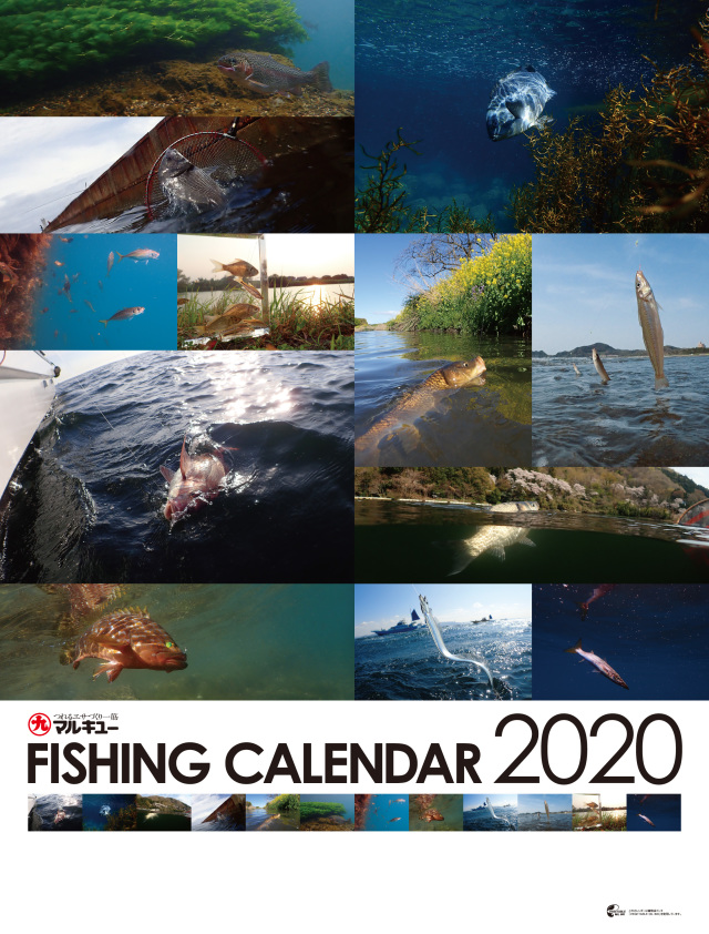 2020年度 マルキユー魚影カレンダー