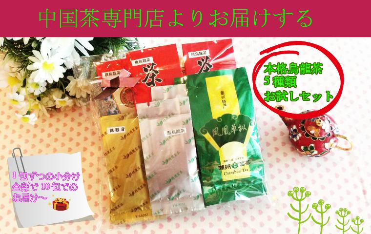 【本格 烏龍茶 5種類飲み比べセット】中国茶お試しセット