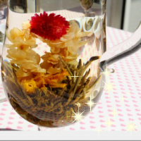 業務用 お得パック 【お花の咲く 工芸茶 囡儿春 250g 約31個入り】