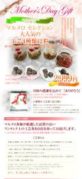母の日 まるでお花畑♪『お花の咲く工芸茶12粒セット』【送料無料】
