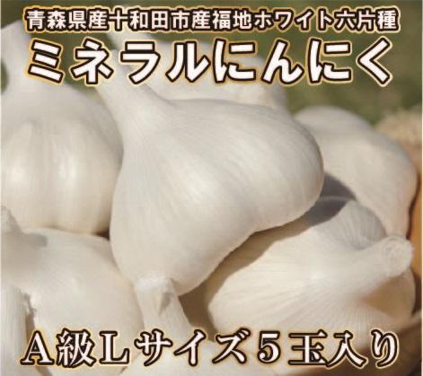【平成30年産新物/青森県産福地ホワイト六片ミネラルにんにく】 A級Lサイズ 5玉入り(約300g前後)