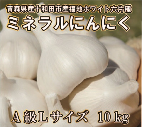 【平成30年産新物/青森県産福地ホワイト六片ミネラルにんにく】 A級Lサイズ10Kg