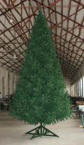 4.8Mノーブルツリー(グリーン)
