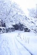 冬景色タペストリー