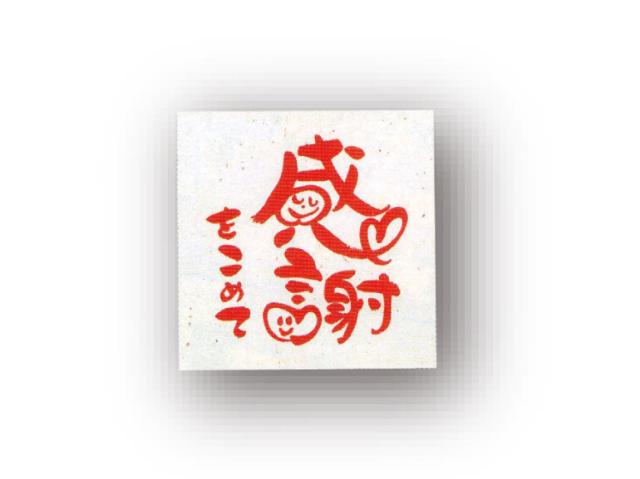 ちょこっとパック 「感謝」 特選煎茶ティーバッグ/3g×1ヶ入