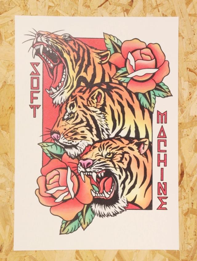 SOFTMACHINE  「PHARAOH TIGERS FLASH」 A3サイズ ポスター