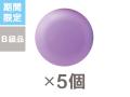 95g丸型 B級品グレープ 5個 FSO-G05
