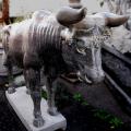 天然黒石彫刻 牛(ウシ) 【※商品番号:m-0064】