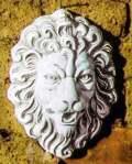 たてがみライオン