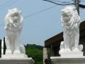 ライオン 人造石