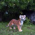 タイガー トラ