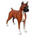 ボクサー 犬