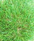 人工芝 防草