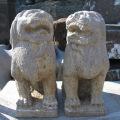 狛犬 こま犬 神社 獅子 阿吽 ライオン 守護獣 仏教