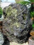 幸太郎石 庭石