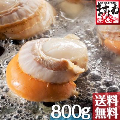 [北海道噴火湾産]特大ボイルほたて800g前後(送料無料)[ほたて/ホタテ/帆立]海鮮 バーベキュー 材料
