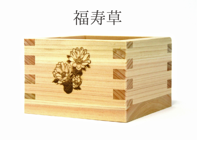 福寿草(一合枡)