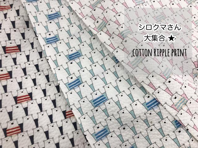 【コットン リップル】シロクマさん大集合★