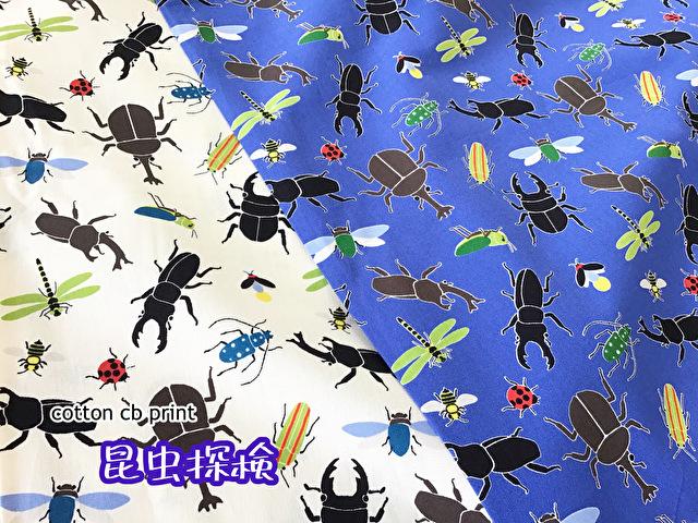 【CBプリント】 ☆★ 昆虫探検 ★☆