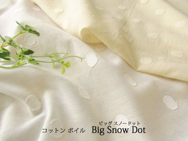 【コットン ボイル】 ビッグ スノードット