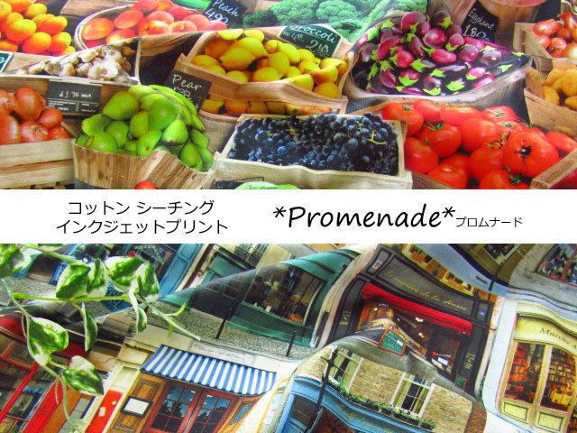 【コットン シーチング】 インクジェットプリント *Promenade ( プロムナード ) *