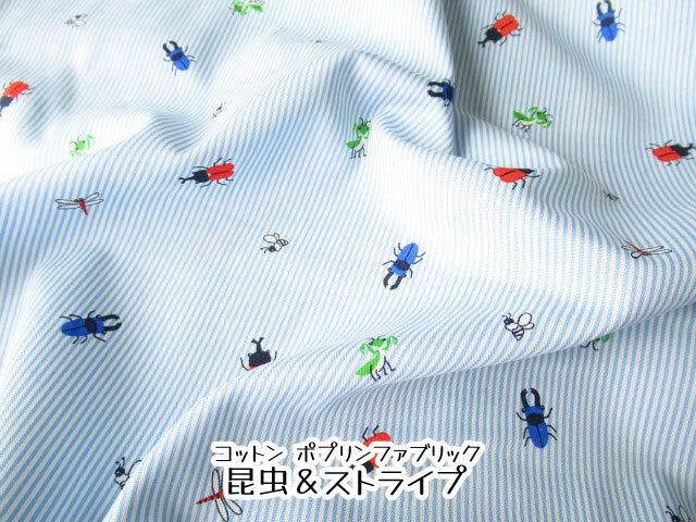 【コットン ポプリンプリント】  昆虫&ストライプ ライトブルー