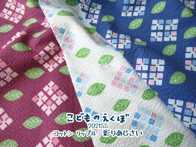 【コットン リップル】 こどものえくぼ2021SS 『 彩りあじさい  』