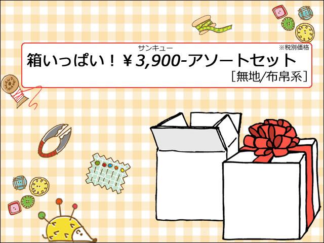箱いっぱい(中)!¥3,900-アソートセット [ 無地/布帛系 ]
