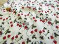 LIBERTY タナローン 2017 * 秋冬柄 『Garden of Temptaion』 * ≪Strawberry Fields≫◇(ストロベリー・フィールズ) 3637254-17B